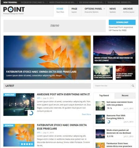 theme wordpress miễn phí đẹp point
