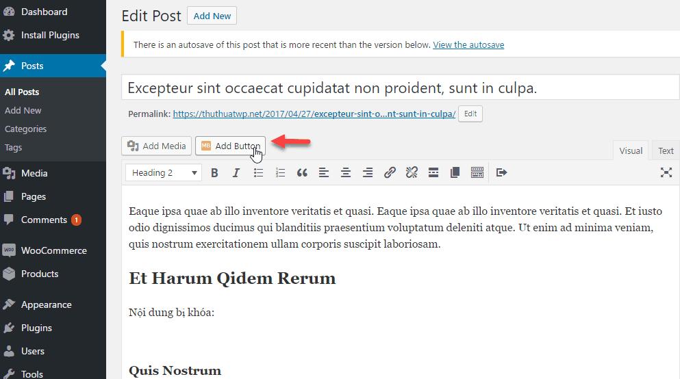tạo button trong wordpress 3