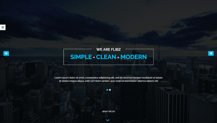 flibz theme WordPress Visual Composer một trang