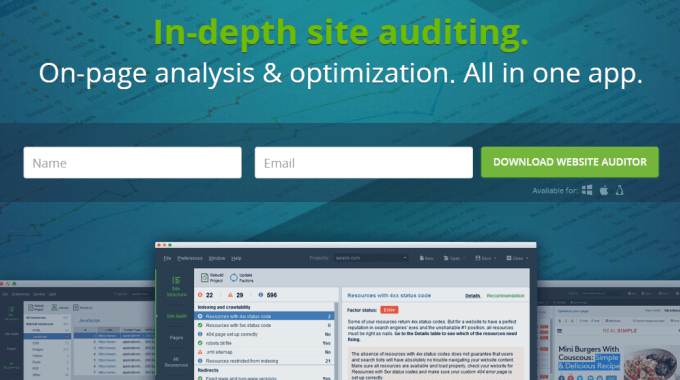 website auditor 2